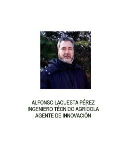 Alfonso Lacuesta